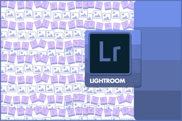 Corso Adobe Lightroom a Firenze Mummu Academy